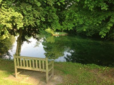 Vilage-pond-Holybourne